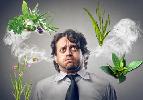 Средства народной медицины от стресса и нервов